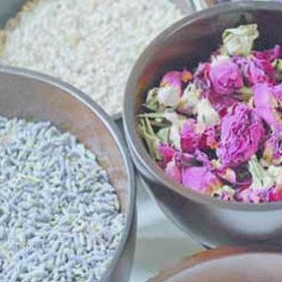 Herbologie Treatments